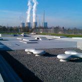 X-Move Planung und Umsetzung von Skateanlagen Skateparks Ramp Bowl Beton Rampen Skateplaza
