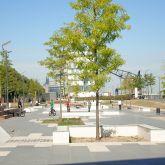 X-Move Planung und Umsetzung von Skateanlagen Skateparks Ramp Bowl Beton Rampen Skateplaza Rheinufer Köln